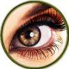 Для зрения (3)
